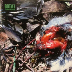 ROTAT – Carnal Beauty CD