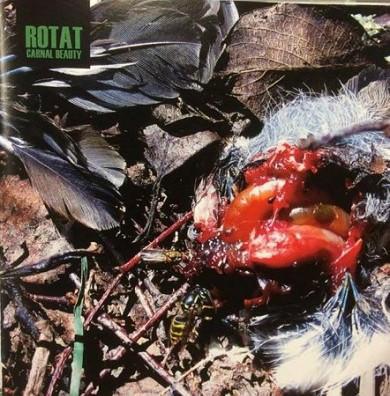 ROTAT – Carnal Beauty CD
