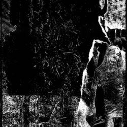 CULTURE OF DEATH – Dispelled Leisure CS