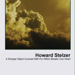 HOWARD STELZER – A Strange Object Covered With Fur Which Breaks Your Heart CS