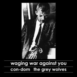 CON-DOM / THE GREY WOLVES – Waging War Against You CD