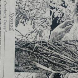 KJOSTAD – Frost Cracking Trees CS
