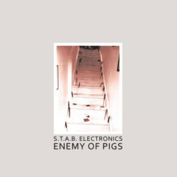 S.T.A.B. ELECTRONICS – Enemy of Pigs LP
